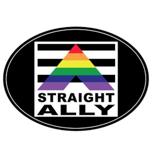 Image of Straight Ally Oval Rainbow Magnet Gay Pride Supporter LGBT Pride Car Magnet