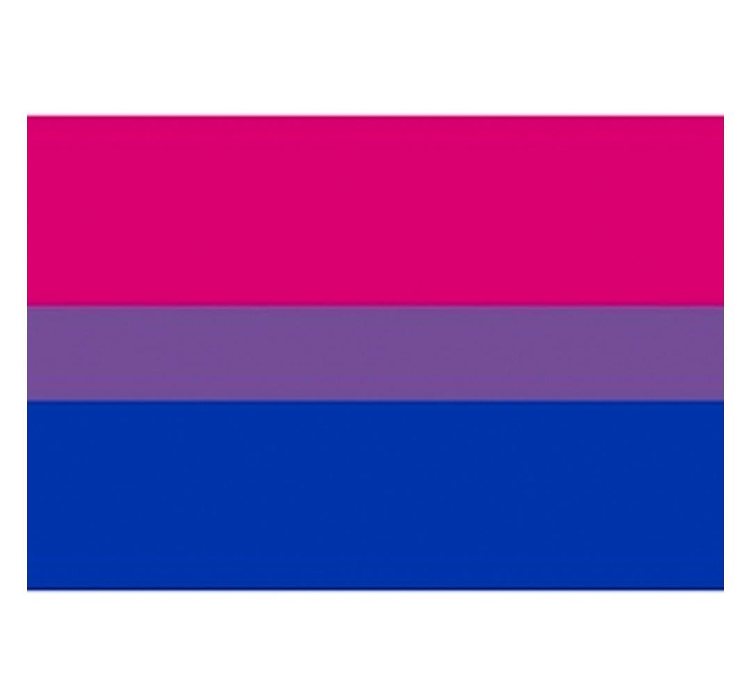 Bisexual / Bi Pride Flag Sticker for Car (2x3