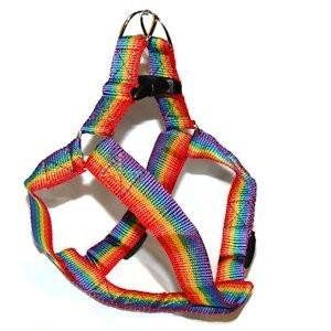Gay Pride Wedding Bands 36 Perfect Gay Pride Rainbow Pet