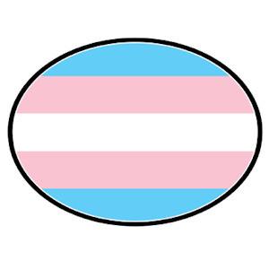 Transgender Flag - Transgender Pride LGBT Flag - Oval Car Magnet