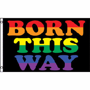 Image of Born This Way LGBT Flag Gay Flag / Rainbow Flag Gay and Lesbian Pride 3 x 5 Polyester Flag