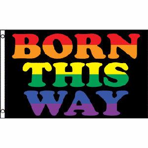 Image of Born This Way LGBT Flag Gay Flag / Rainbow Flag Gay and Lesbian Pride 3 x 5 Polyester Flag