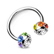 Rainbow Multi Gem Horseshoe - Gay & Lesbian Pride (Eyebrow Ring / Body Jewelry)