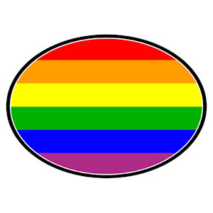 Image of Full Rainbow Oval Mini Car Magnet LGBT Gay and Lesbian Pride Decal