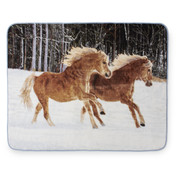Palaminos Horses Blanket Throw from Shavel