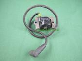 """Onan Cummins 166-0859-02 RV Generator Ignition Coil 21 """" Lead fits HGJAB HGJAC"""