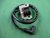 Onan Cummins | 166-0866 | RV Generator Ignition Coil 22 Inch Lead