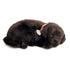 Perfect Petzzz plush black lab puppy