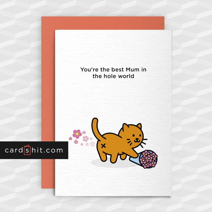 Greetings Cards Mothers Day Cards You're the best Mum in the hole world