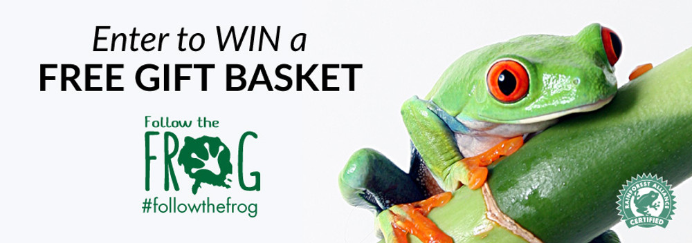 2017 #FollowtheFrog and Win