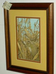 Deer In The Corn Field Original Colored Pencil Drawing by Larry Peterson