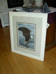Bald Eagle Landing Original Pastel Drawing by Sally Porter