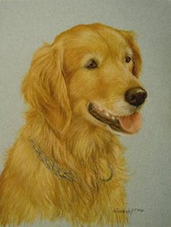 Golden Retriever Vignette Original Pastel Drawing by the Porter Family