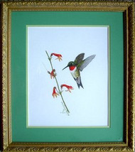 Porter Family Original Pastel Ruby Throated Humming Bird