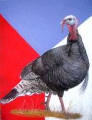 Original Pastel Drawing Patriotic American Wild Turkey