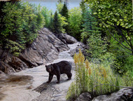 Original Watercolor & Acrylic Painting Black Bear & River Scene