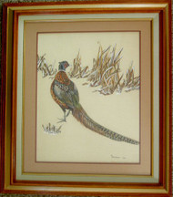 Framed Original Watercolor Ring-necked Pheasant