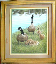Framed Original Pastel Drawing Canada Geese Family