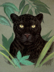 Original Pastel Drawing Black Leopard