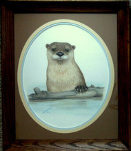 Framed Original Pastel Drawing River Otter