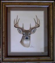 Framed Original Pastel Drawing Whitetail Deer