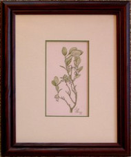 Bog Whortleberry Framed Original Colored Pencil Drawing by Larry Peterson