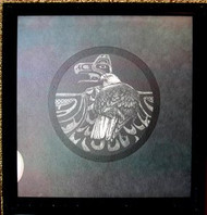 Eagle Framed Scratch Board by Myra Nye