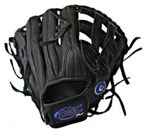 H WEB Custom Fielders Glove
