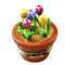 Multi Color Tulips In Terracota Pot Rochard Limoges Box