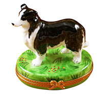 Limoges Imports Black & White Collie Limoges Box