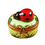 Mini Ladybug On Oval Rochard Limoges Box