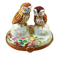 Two Owls Rochard Limoges Box