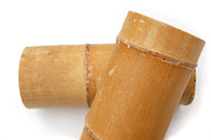 "Bamboo: 5"" Diameter"