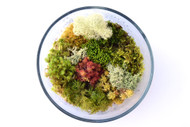 Deluxe Moss Mix
