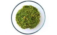 Hypnum Moss (Hypnum imponens)