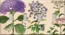 Purple Hydrangea - Quadruple Switch