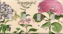 Pink Hydrangea - Quadruple Switch