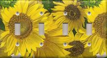 Sunflowers - Quadruple Switch