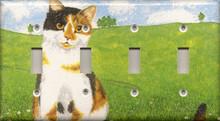 Multi Colored/Money Cat - Quadruple Switch