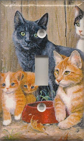 Cats - Single Switch 1153b-S