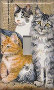 Cats - Single Switch 1153c-S