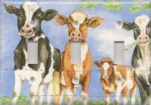 Calves & Cows - Triple Switch