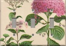Pink Hydrangea - Triple Switch
