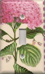 Pink Hydrangea - Single Switch