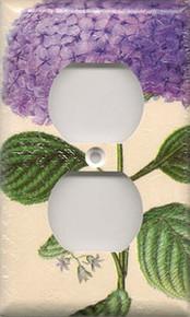 Purple Hydrangea - Outlet