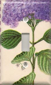 Purple Hydrangea - Single Switch