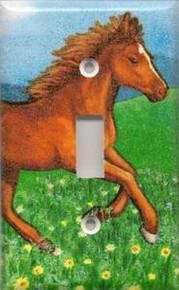Pony - Single Switch