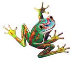 fancy-frog2.jpg