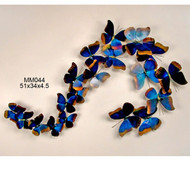 Blue Morpho S Shape