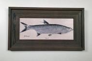 Tarpon Framed Artwork 12 x 19